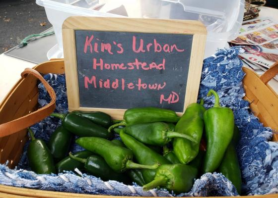 Kim's Urban Homestead