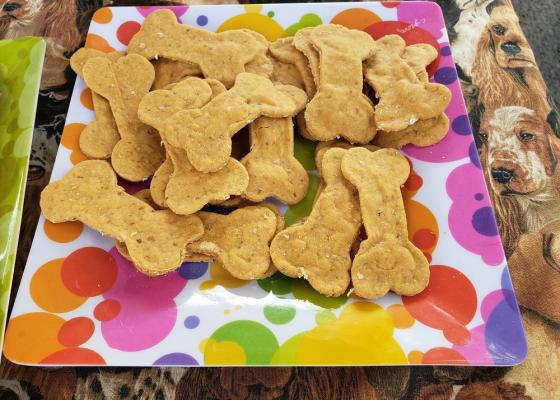 TrendSETTER Dog Treats